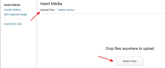 'Upload Files' on WordPress