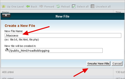 File Creation in cPanel