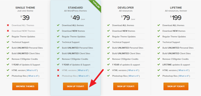 Buy Igniter WordPress Themes