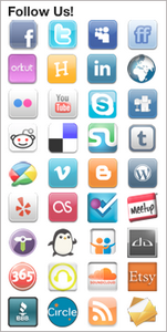 Social Media WordPress Widget