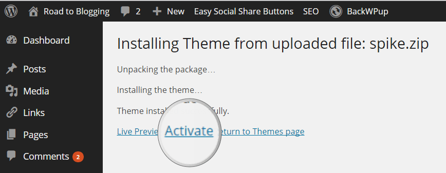 Activate Premium WordPress Theme