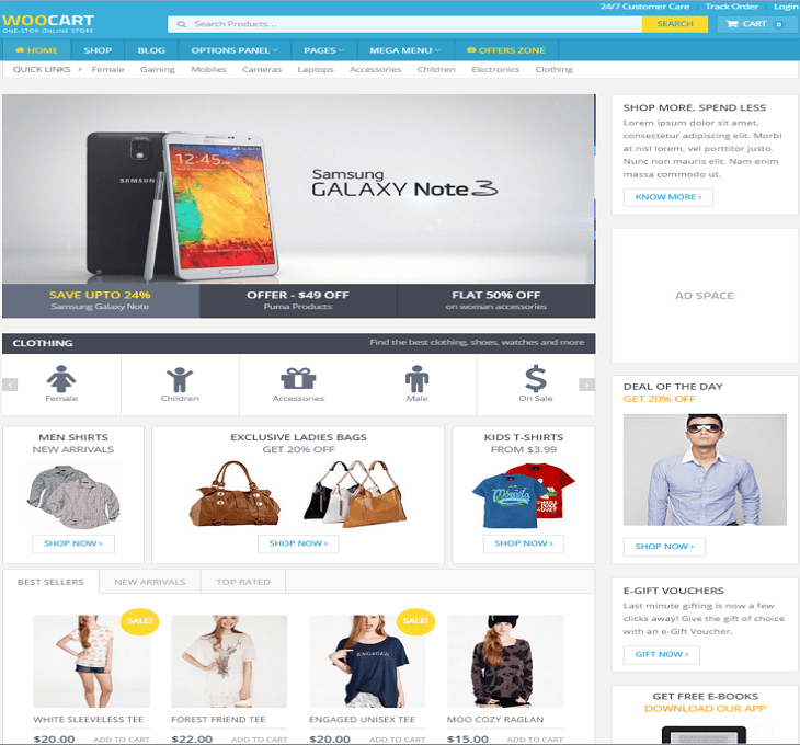 Flipkart WordPress Theme