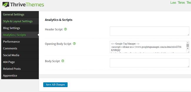 Thrive Themes Analytics Scripts