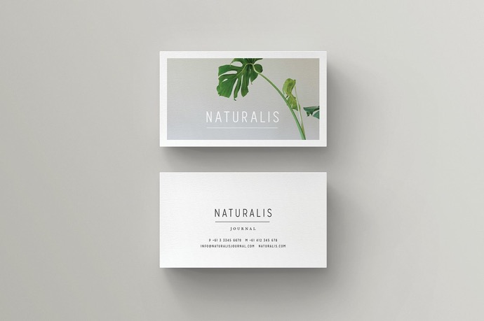 30+ Simple & Minimal Business Card Templates For 2019 12