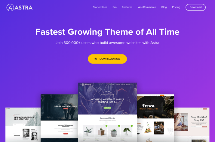 21 Best Cheap But Reliable Premium WordPress Themes 4