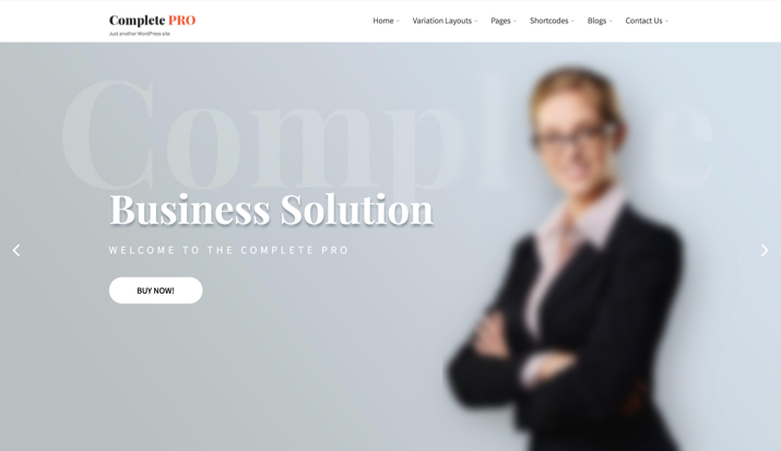 21 Best Cheap But Reliable Premium WordPress Themes 20
