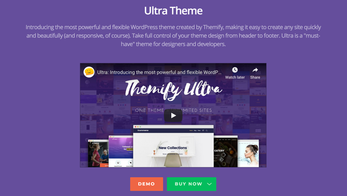21 Best Cheap But Reliable Premium WordPress Themes 5