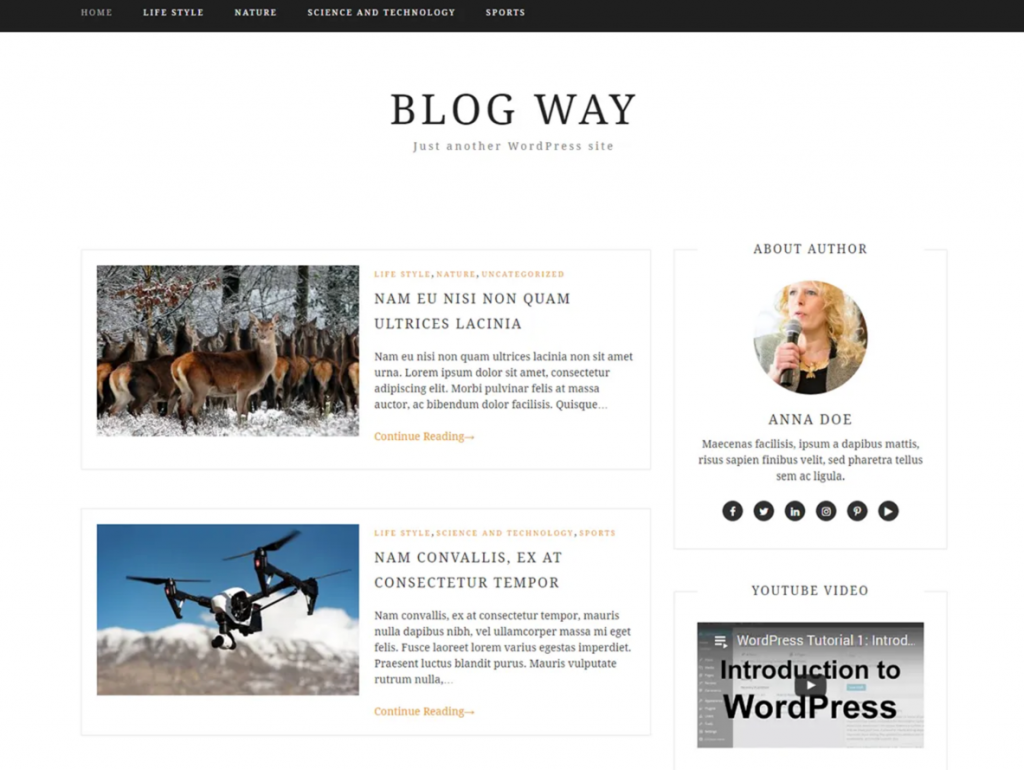 40 Best FREE WordPress Themes For Blogging (2020) 28