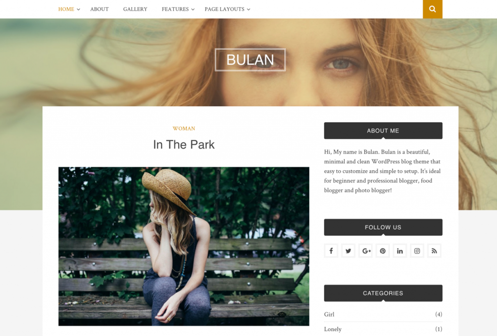 40 Best FREE WordPress Themes For Blogging (2020) 13