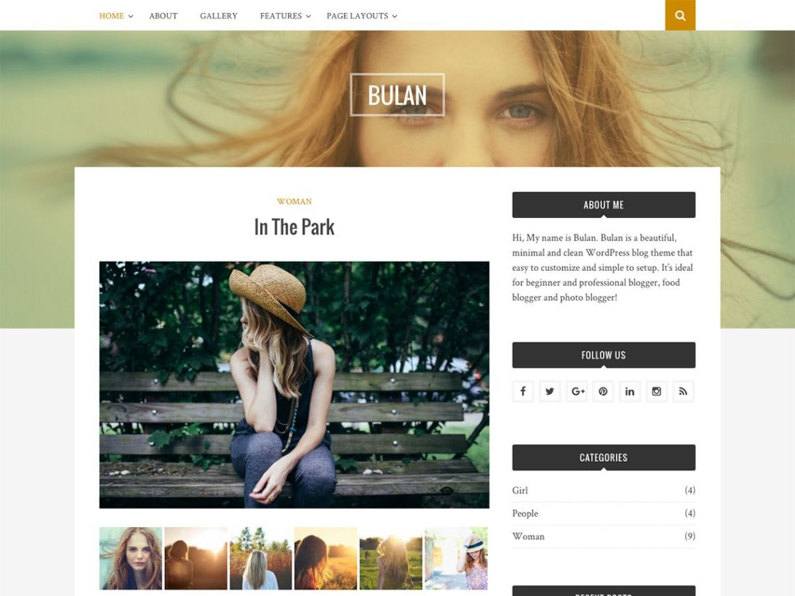 30+ Best FREE WordPress Themes for Writers (2020) 25