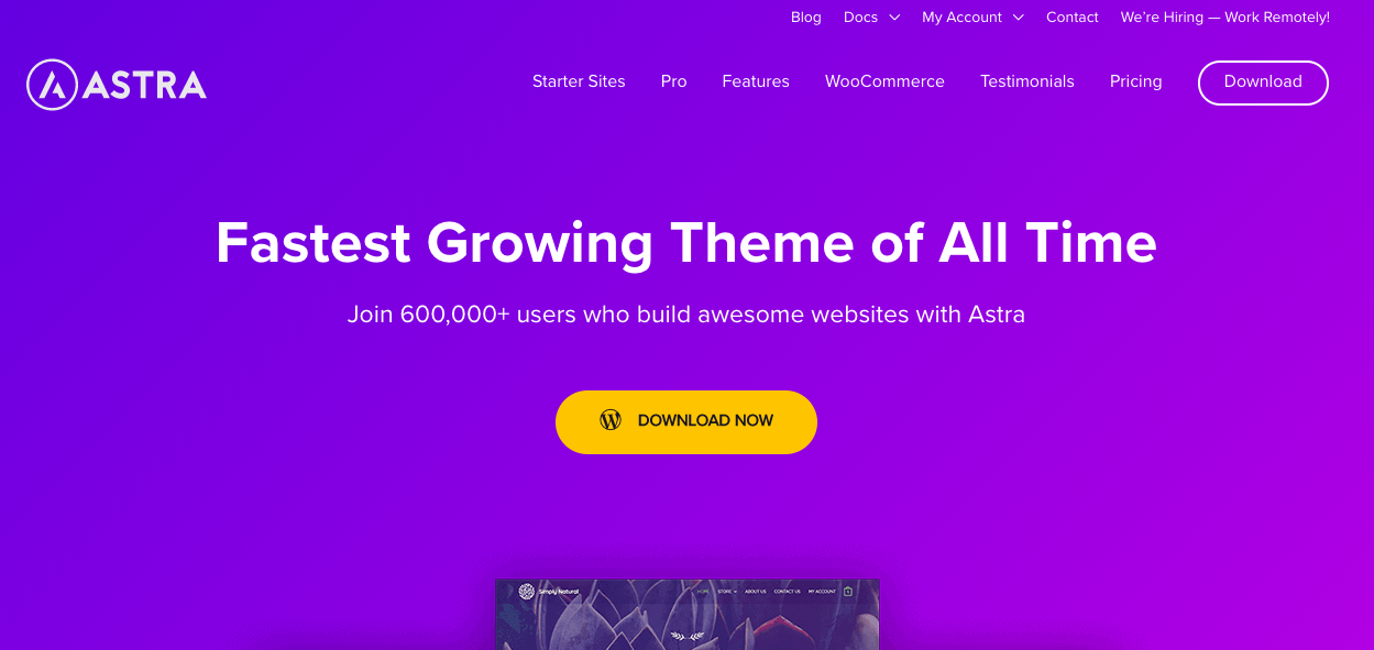 40 Best FREE WordPress Themes For Blogging (2020) 2