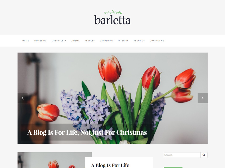 30+ Best FREE WordPress Themes for Writers (2020) 26
