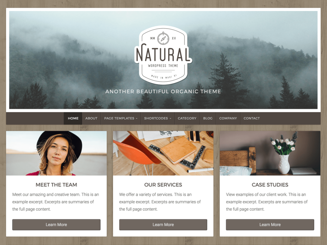 40 Best FREE WordPress Themes For Blogging (2020) 36