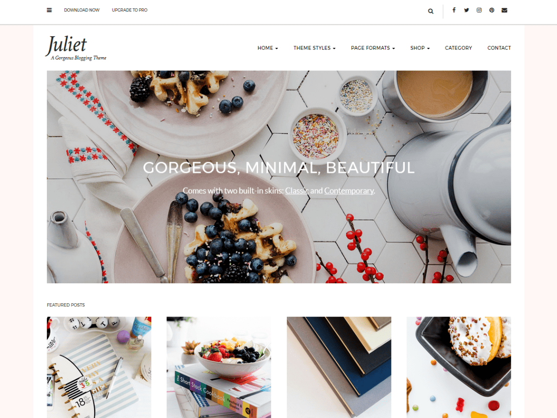 30+ Best FREE WordPress Themes for Writers (2020) 20